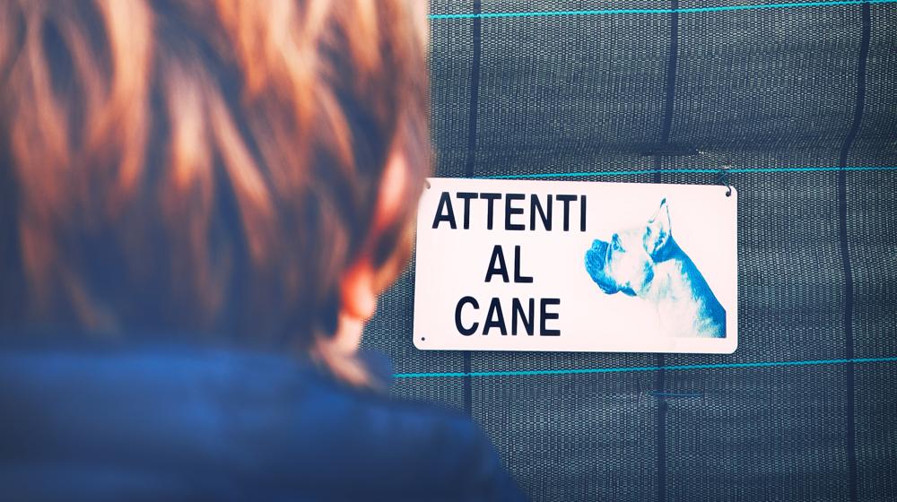 """Primo piano di un cartello che indica la presenza di un cane"""""""